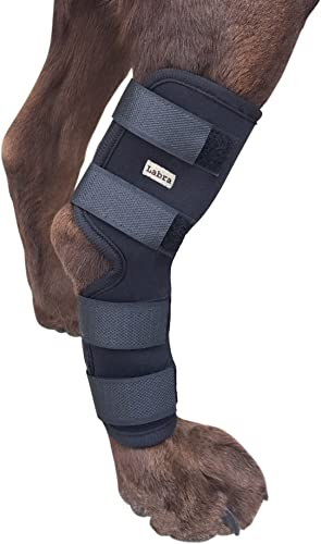 Labra-Supportive-Dog-Canine-Rear-Leg-Hock-Joint-Wrap-Protects-Wounds