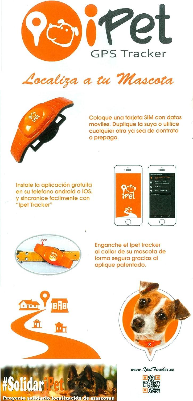 iPet tracker - localizador GPS para PERROS - SIN CUOTAS | Collar rastreador con chip GPS para perros - puedes poner tu propia SIM | App, atención y ...
