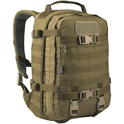881f2ae9428 Amazon.com : Wisport Sparrow 30 II Rucksack Coyote : Sports & Outdoors