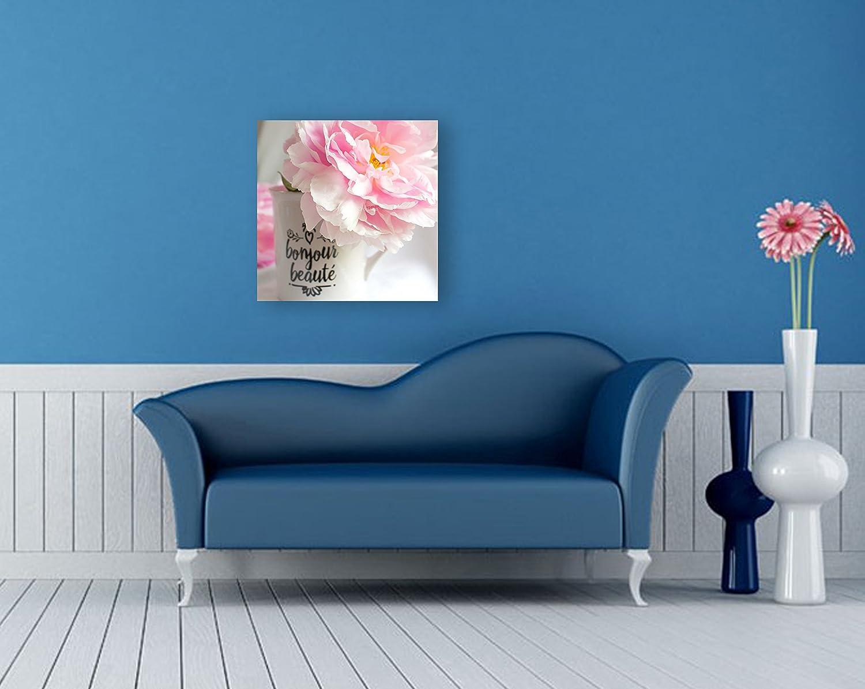 Amazon.com: Pink Peony Shabby Chic Wall Art on CANVAS French Decor ...