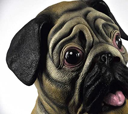 1ad35caf6 Amazon.com: Accoutrements Pug Mask: Toys & Games