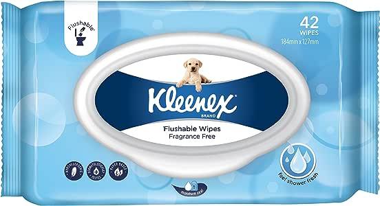KLEENEX Flushable Wipes, Fragrance Free (10 x 42 Wipes)