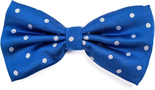 DonDon Pajarita para Hombre de lunares Punto azul elegante con ...