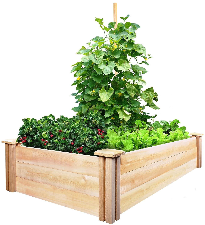 Greenland gardener raised bed garden kit - Greenes Fence Cedar Raised Garden Kit 2 Ft X 4 Ft X 10 5 In