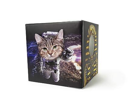 Amazon.com: Cuerpo de gato de 30 vatios, caja de juguete ...