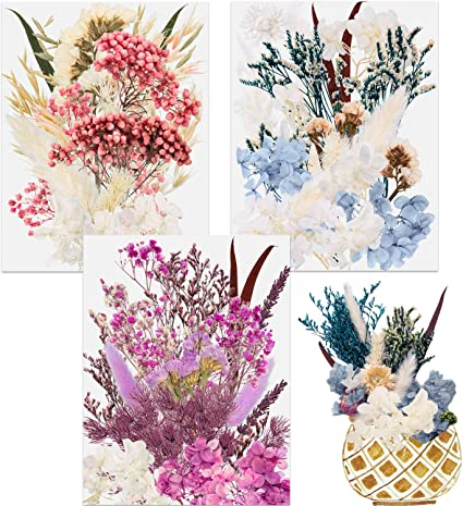 Amazon Com Natural Dried Flowers Diy Pressed Dried Flower Decorative Real Dry Flowers And Plants Multiple Styles For Resin Jewelry Crafts Nail Soap Candle Scrapbooking Decor
