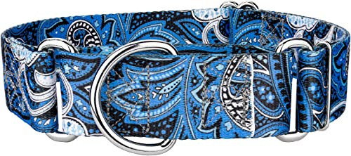 Country Brook Petz - 1 1/2 Inch Martingale Dog Collar - Paisley Collection