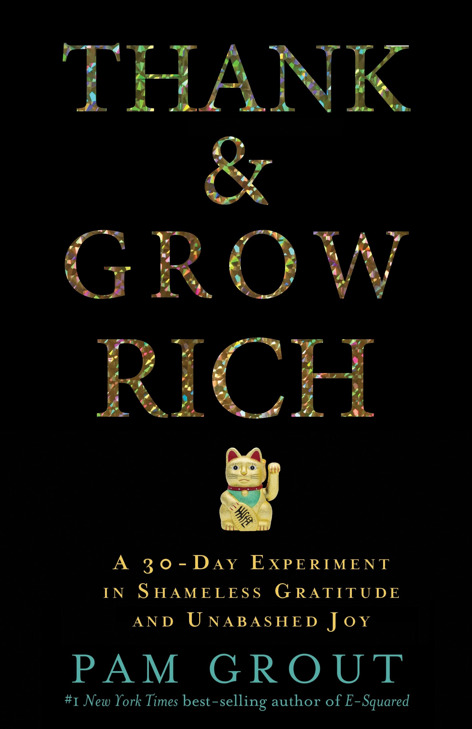 worksheet Think And Grow Rich Worksheet thank grow rich a 30 day experiment in shameless gratitude and unabashed joy pam grout 9781401949846 amazon com books