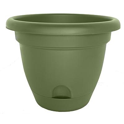 Bloem LP1442-6 Lucca Planter, 14-Inch, Living Green, 6-Pack : Garden & Outdoor