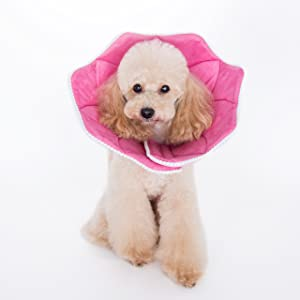 Alfie Pet - Noah Recovery Collar (for Dogs and Cats) - Pattern: Pink Pom Pom, Size: XS