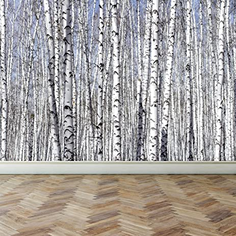 Wall Mural White Birch Trees, Peel And Stick Repositionable Fabric  Wallpaper For Interior Home Decor Part 32
