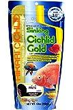 Hikari Cichlid Gold Sinking Fish Food (Mini), 342g