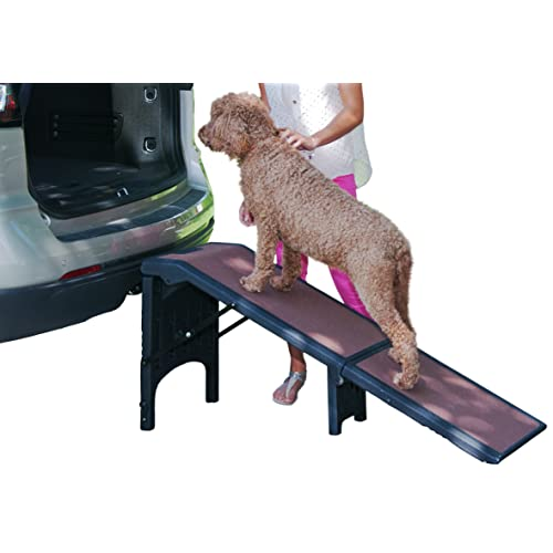 Dog Ramps For Beds Amazon Com