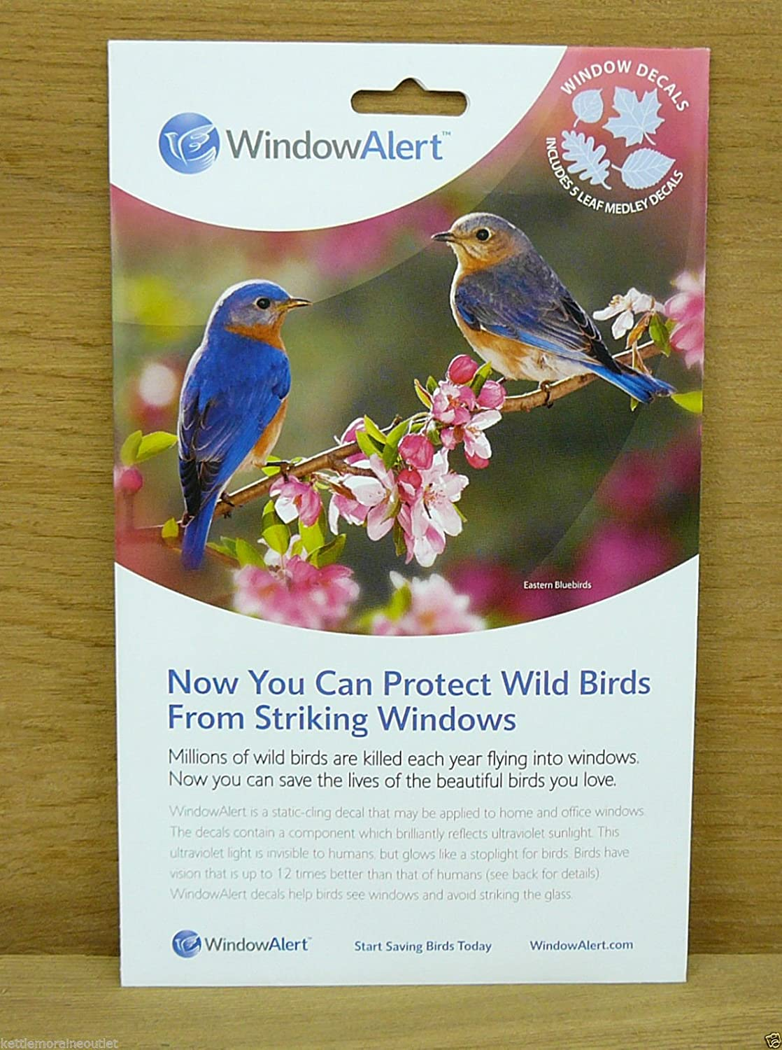 Amazoncom Window Alert Leaf Medley Decals Save Protect Wild - Invisible window decals for birds