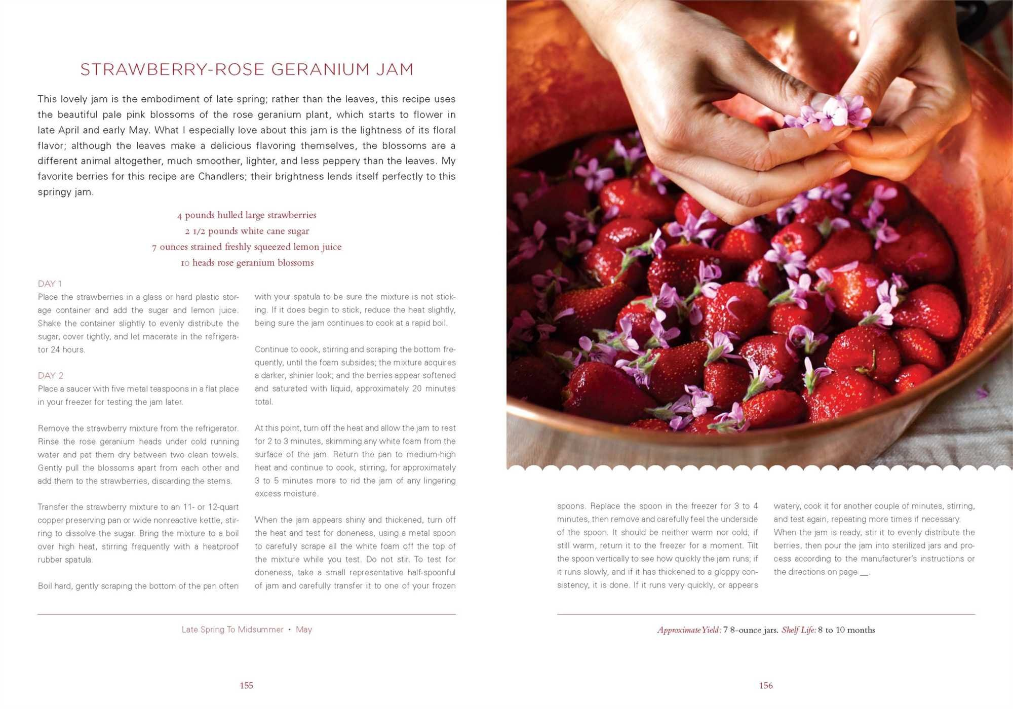 The Blue Chair Jam Cookbook Rachel Saunders