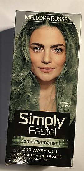 Simplemente Pastel Semi Permanente tinte de pelo – bosque ...