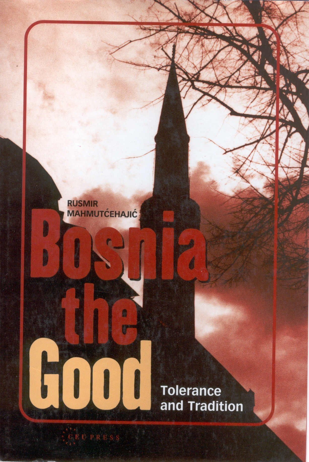 Download Bosnia the Good: Tolerance and Tradition pdf