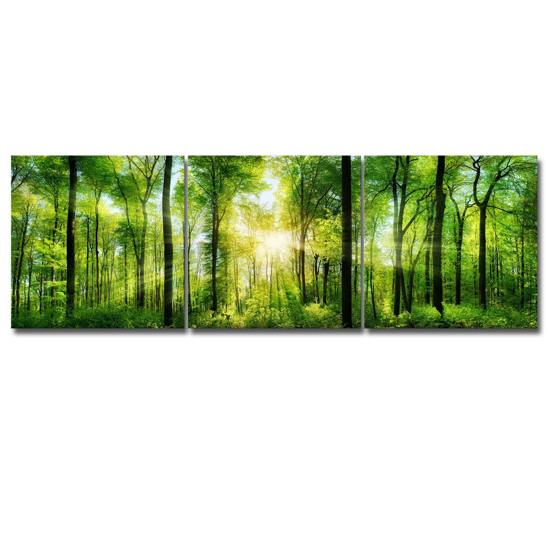 Royllent アートパネル インテリアアート「森」キャンバス絵画(額付きの完成品) (40*120*1PC) B06WGN2V6X40*120*1PC