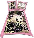 Animal Planet Panda DBO Parure Linge de Lit 200 x 140 cm