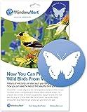WindowAlert Butterfly Decals