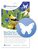 WindowAlert Butterfly Decals