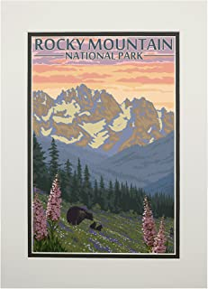 product image for Rocky Mountain National Park, Colorado - Bear and Cubs with Flowers (11x14 Double-Matted Art Print, Wall Decor Ready to Frame)