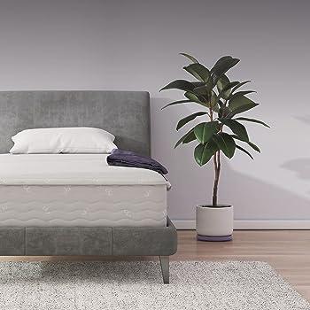 Signature Sleep 10 Inch Twin Coil Mattresses