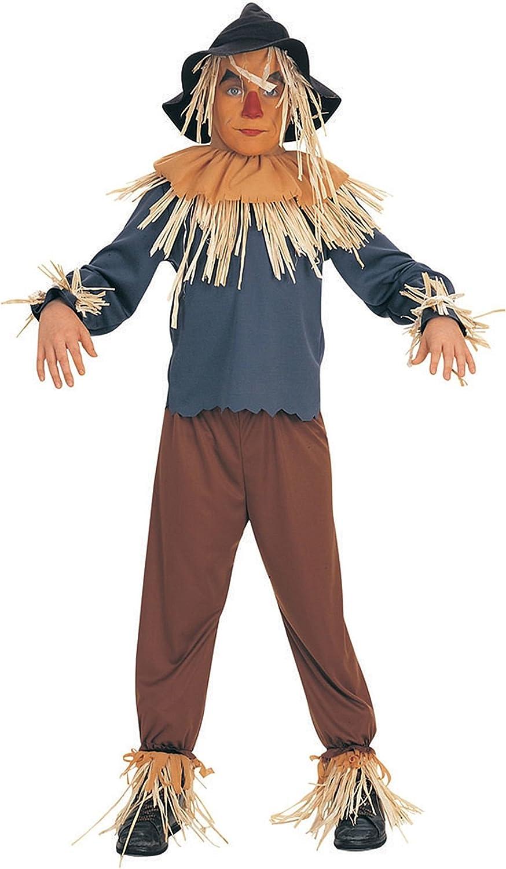 Rubies 882507L - Disfraz de espantapájaros para niño (8 años ...