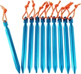 Tent Stake - YUEDGE Lightweight Aluminum Tent Stakes Tent pegs (Pack of ten)  sc 1 st  Amazon.com & Amazon.com : Raqpak Tent Stakes Aluminum Pegs 10 Pack with Pouch ...
