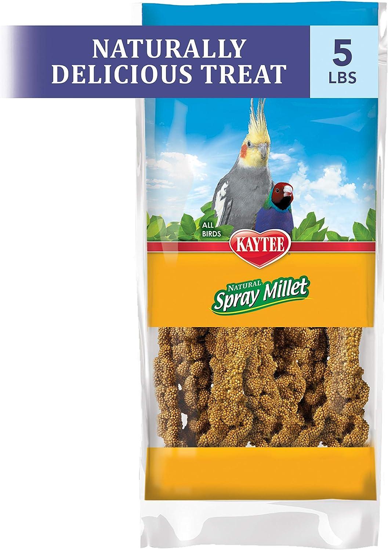 Kaytee Gold Spray Millet, 5 Lbs