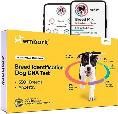 A Dog DNA Test