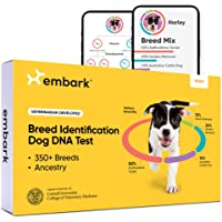 Embark | Dog DNA Test | Breed Identification Kit