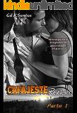 Cafajeste Renan (Volume 1/2) Arquitetos e engenheiros apaixonados