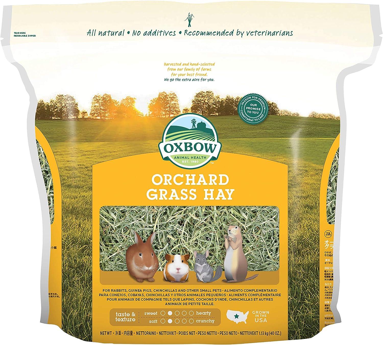 Orchard Grass Heno para Mascotas pequeñas Oxbow, 1,13kg