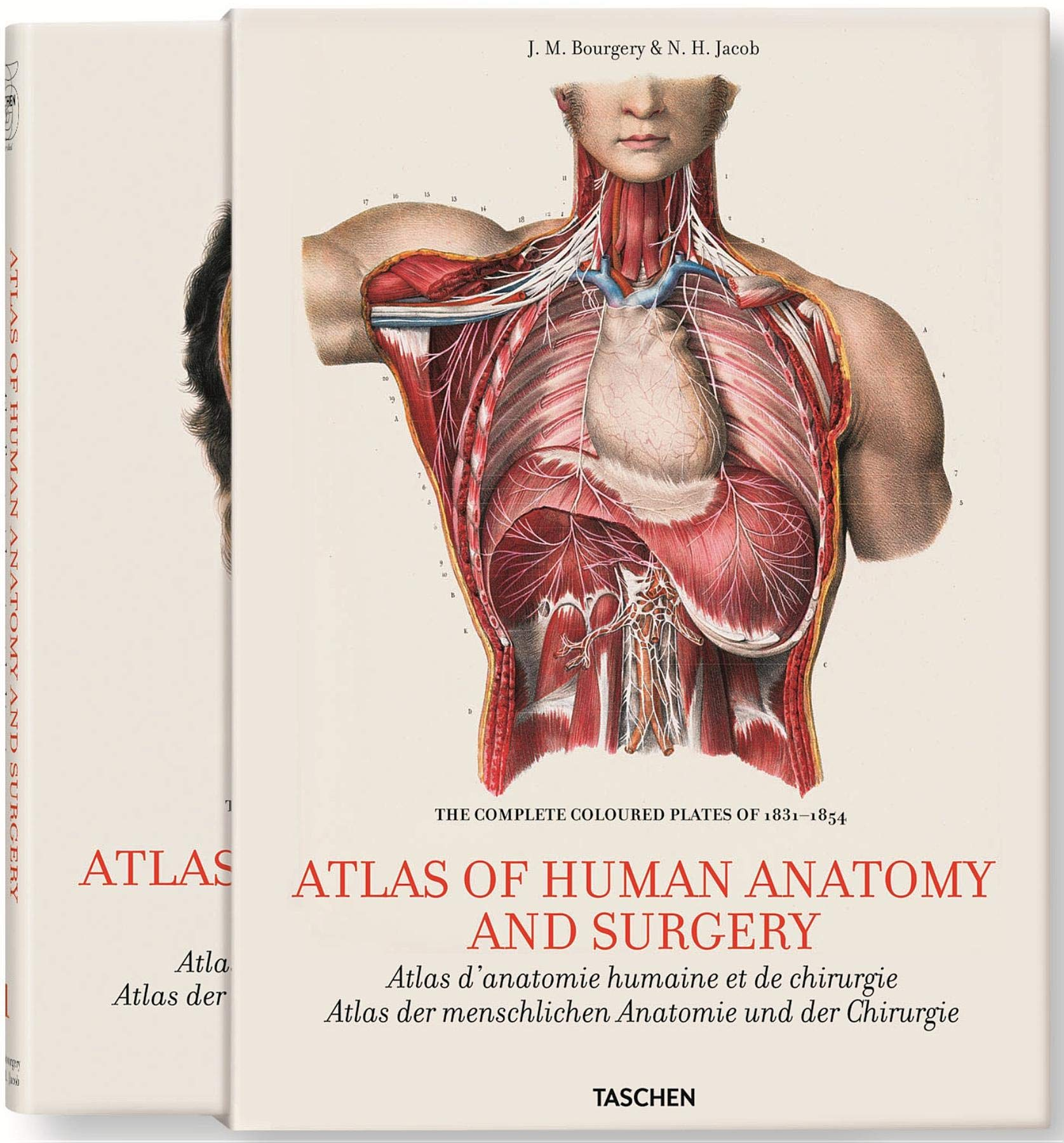 Bourgery Atlas Of Anatomy And Surgery 2 Vol Jean Marie Le Minor
