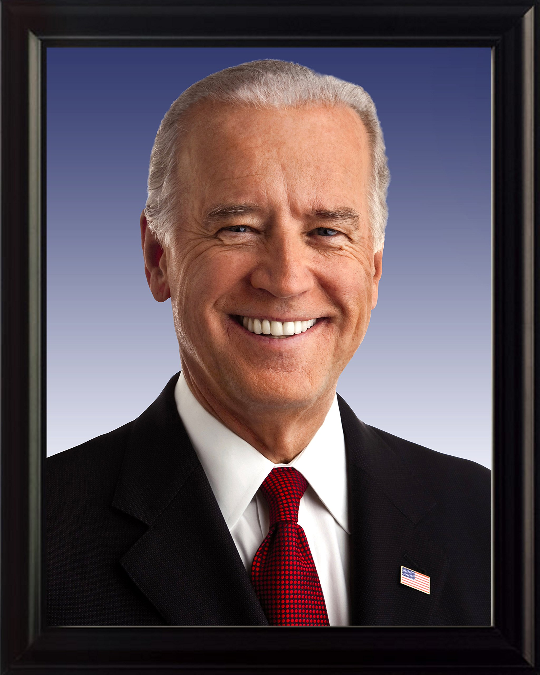 Joe Biden 8x10 Framed Photo
