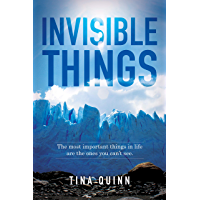 Invisible Things: The most important things in life are the ones you can't see. (English Edition)