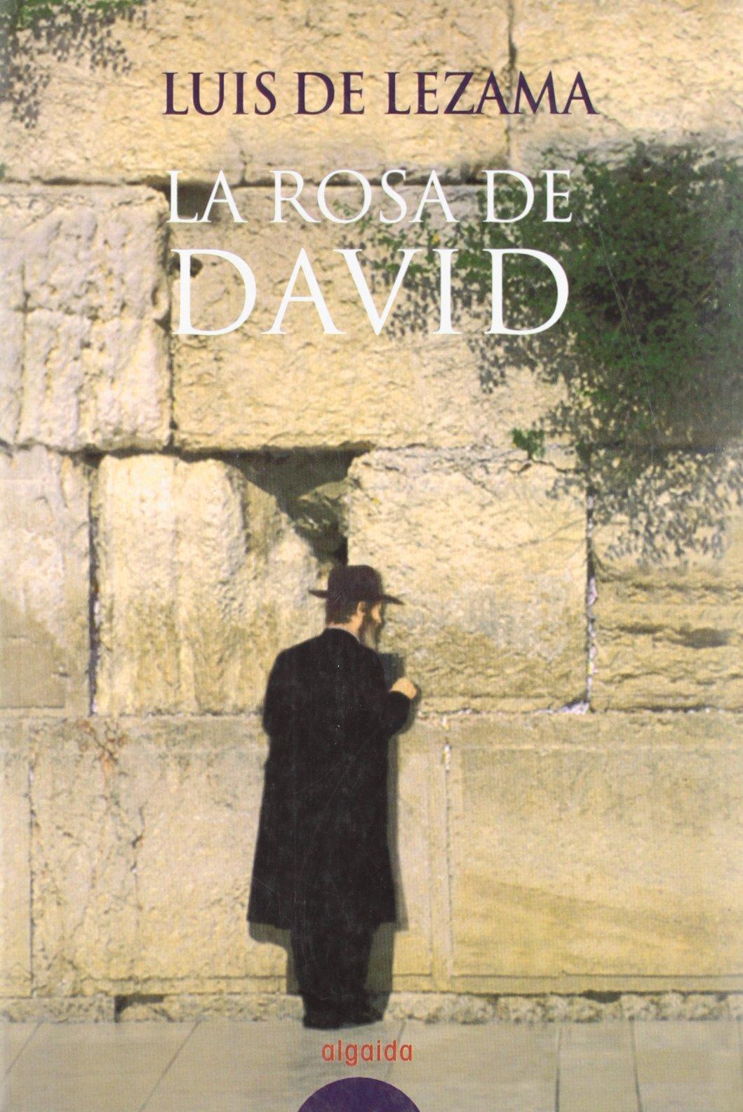 Download La rosa de David (COLECCION LITERARIA) (Spanish Edition) PDF
