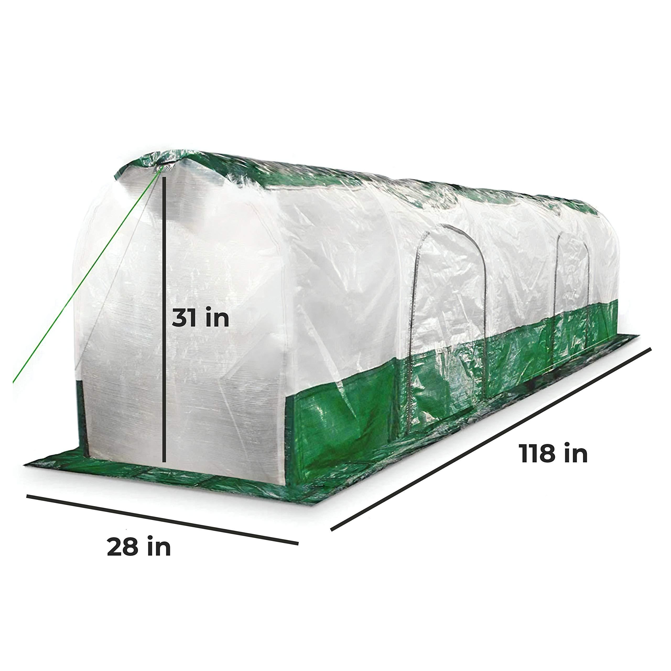 Bio Green SD300 Superdome Growtunnel, Garden Cl Length 9.8 x Width 2.3 ft, 2.6 x 2.3X 9.8', Transparent/Green by Bio Green (Image #1)