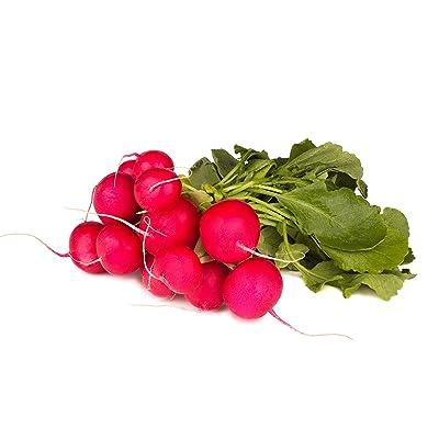 Champion Radish Seeds : Radish Plants : Garden & Outdoor