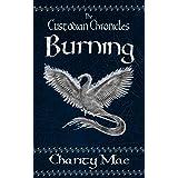 The Custodian Chronicles: Burning