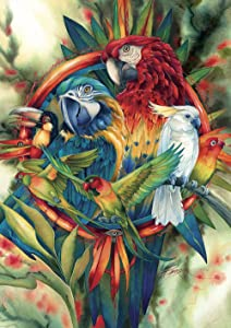Toland Home Garden 1012314 Exotic Tropical Birds 28 x 40 Inch Decorative, Toucan Macaw Parrot, House Flag