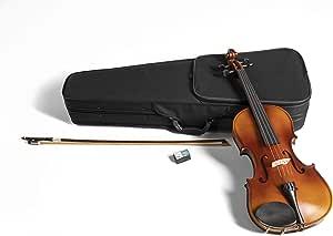 GEWApure Viola Set HW Madera dura 35,5 cm Montado con Barbada, Cordal con microafinador, Arco, Resina, Estuche con Bandolera: Amazon.es: Instrumentos musicales