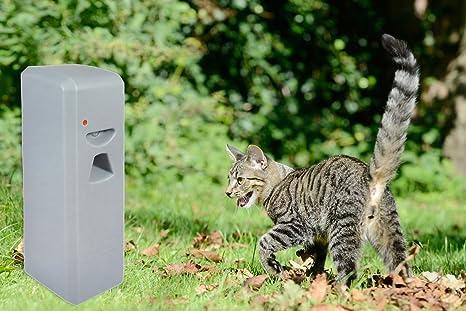 Argus Animal Prevent Animales Spray - Repelente Ahuyentador ...