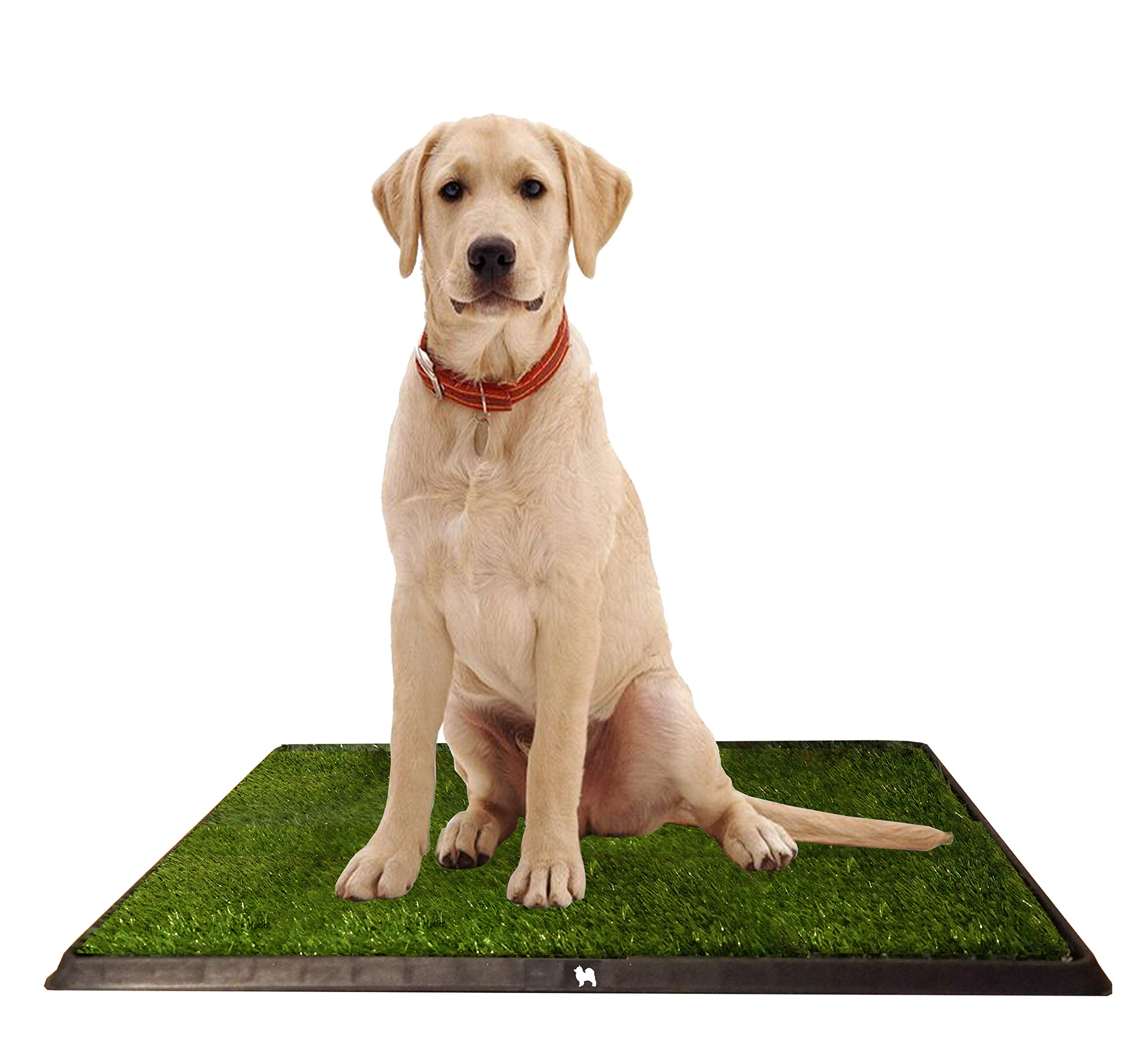 Puppy Potty Grass Toilet Trainer  Tray for Dogs and Puppies Large 20 x 25 Inch. Training Grass Pee Pad For Indoor, Outdoor Use, Porches, Apartments and Houses  Grass Turf Mat