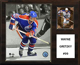 "product image for NHL Edmonton Oilers Wayne Gretzky Player Plaque, 12""x15"""