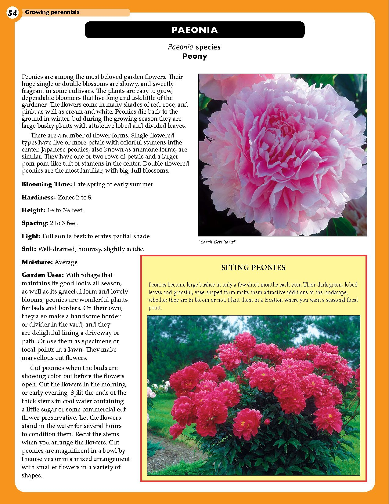 Home Gardeners Perennials Bulbs The Complete Guide To Growing 58