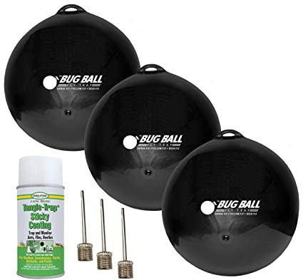 Amazon.com: El Caballo De Bug Ball Kit – Amarillo Volar ...