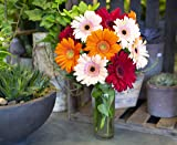 California Grown Collection: Bouquet of 10
