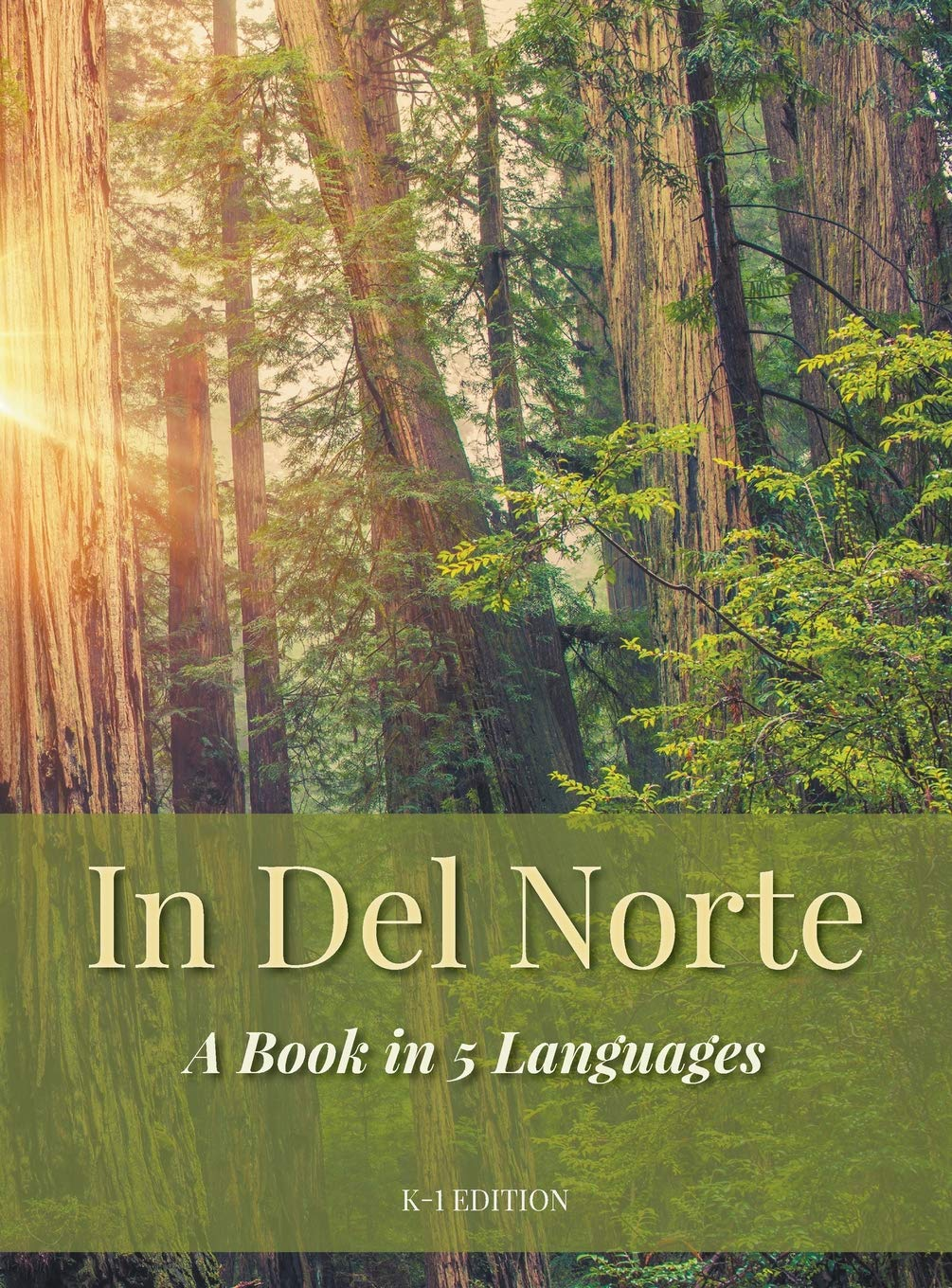 In del Norte: A Book in 5 Languages by Booklocker.com